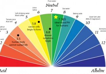Calibration of pH meters